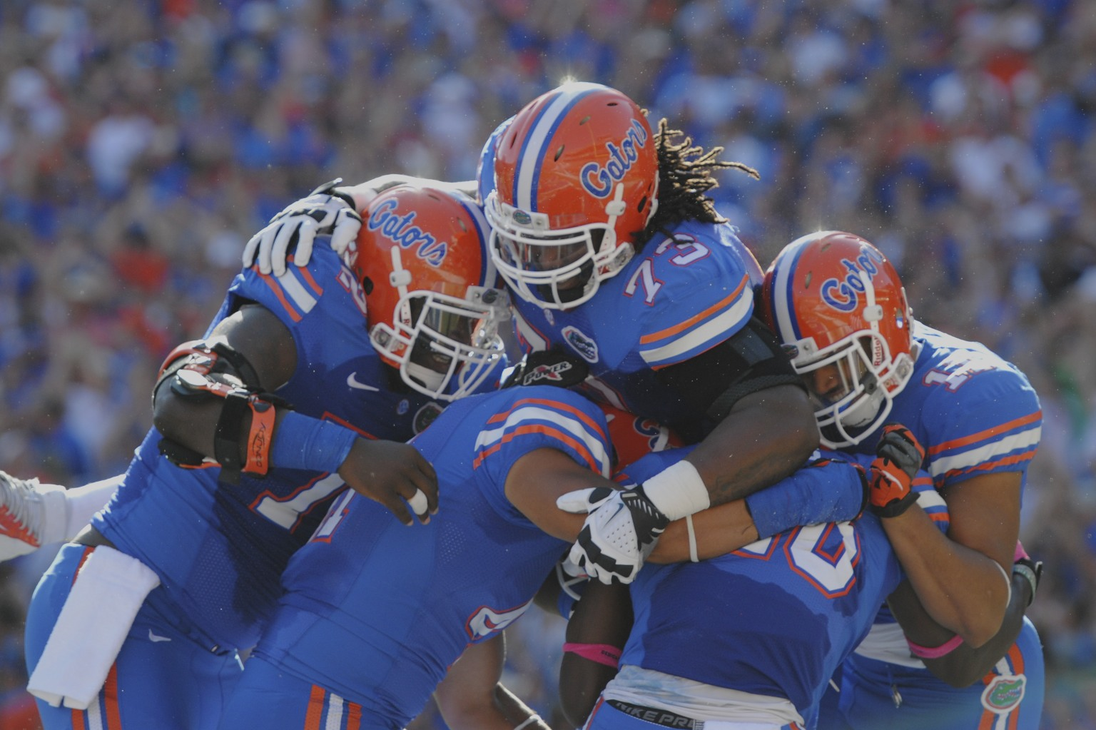Florida players celebrate after their first touchdown in the first minute of the game against South Carolina Saturday afternoon.
