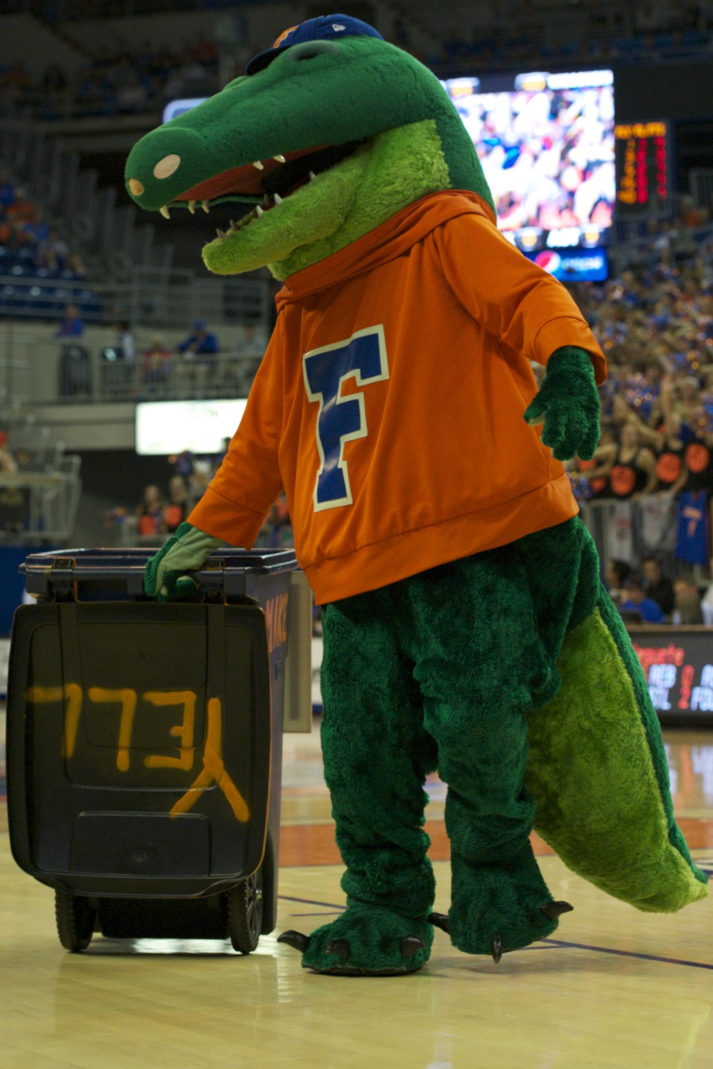 Florida mascot Albert pumps up the crowd during a timeout Wednesday night.
