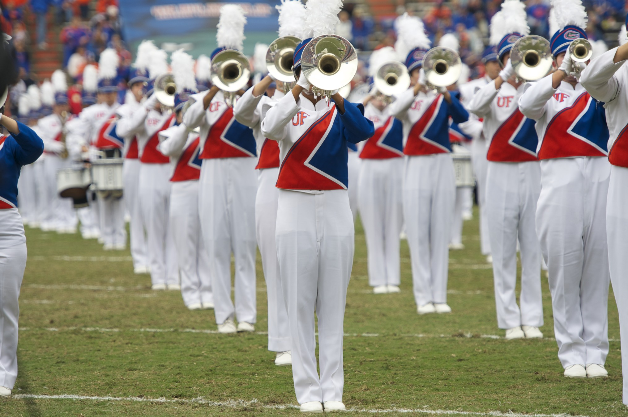 Gator Marching Band performs before the start of the game on Saturday.
