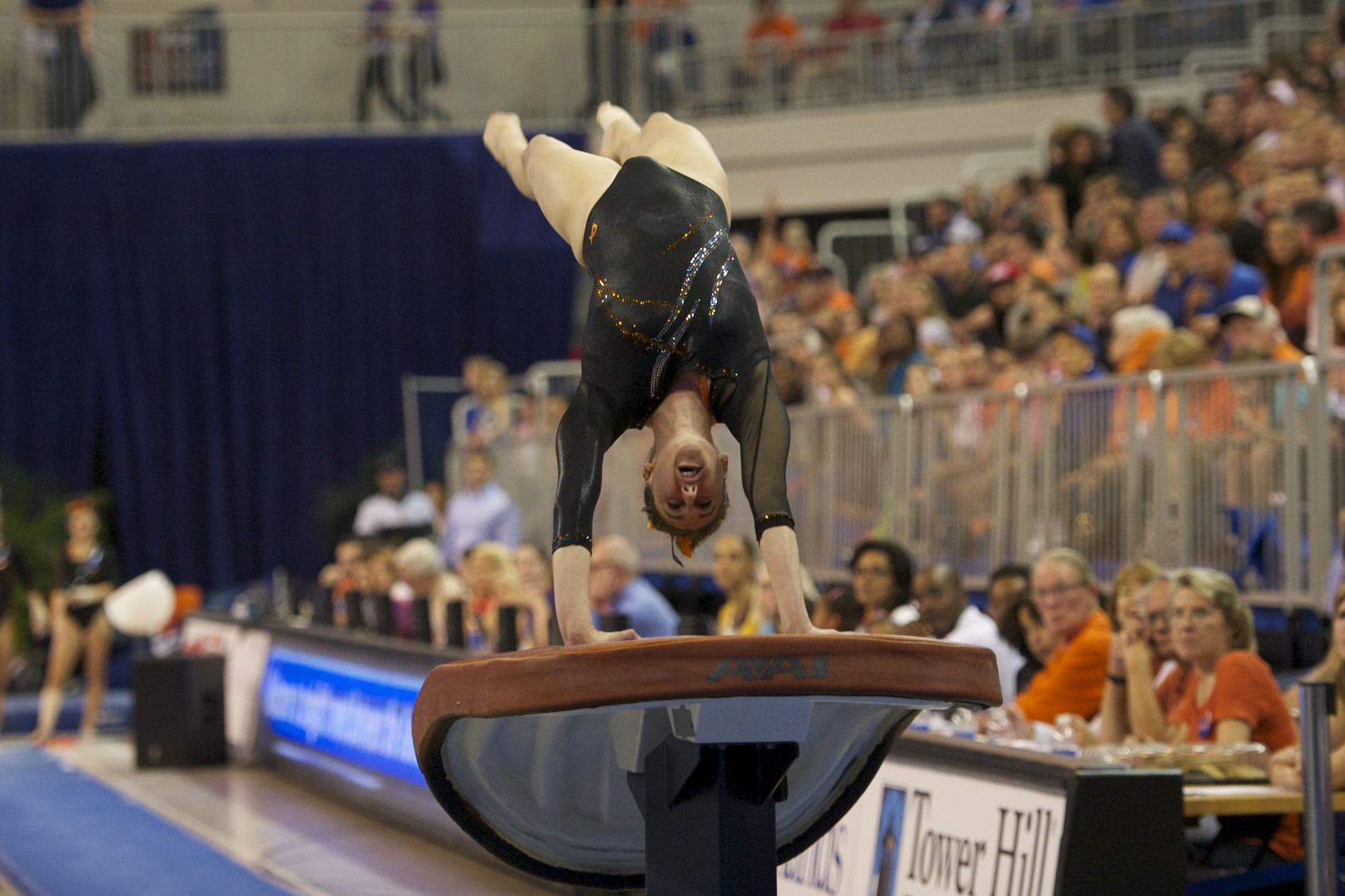 Junior Lauren Rose was exhibition on vault for the Florida Gators Friday night.