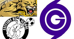 HS Logos