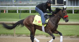 May 3, 2016; Louisville, KY, USA; Exercise rider Jonny Garcia guides Kentucky Derby hopeful Nyquist during workouts in advance of the 2016 Kentucky Derby at Churchill Downs. Mandatory Credit: Jamie Rhodes-USA TODAY Sports