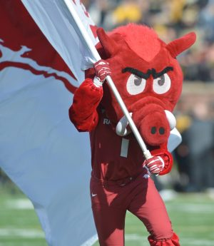 Nov 28, 2014; Columbia, MO, USA; The Arkansas Razorbacks mascot runs with their flag on the field before the game against the Missouri Tigers at Faurot Field. Missouri won 21-14. Mandatory Credit: Denny Medley-USA TODAY Sports